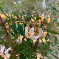 2 Paar Ohrringe weiß & grün