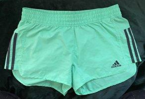Adidas Originals Pantalón corto deportivo turquesa