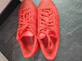 Adidas Basket à lacet rouge