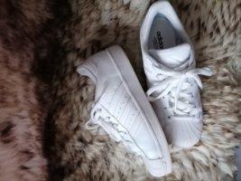 Adidas Superstar in Weiß Gr. 38
