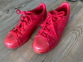 Adidas Originals Basket à lacet rouge