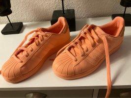 Adidas superstar Basket à lacet orange fluo-abricot