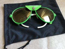 Alpina Oval Sunglasses neon green