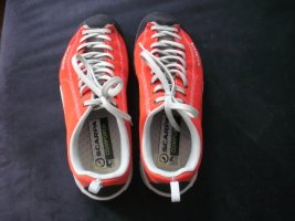 Carpa Mojiti Sneakers