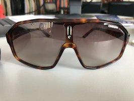 Carrera Gafas marrón-negro