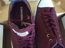 Converse in purpurrot, EUR Gr. 42