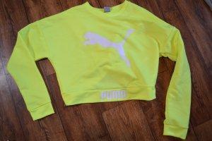 Cooler puma Sweater Gr. 38 in Neongelb/grün