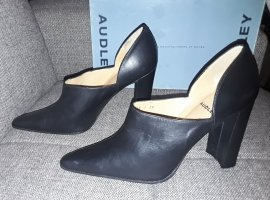 Audley Pointed Toe Pumps black