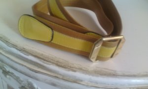 Aigner Belt multicolored