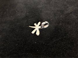 Fossil Charm