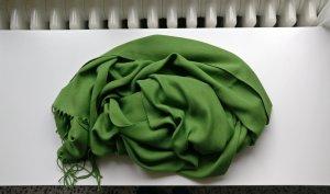 Cavita Pashmina grass green