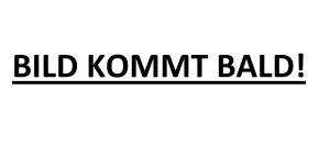 H&M Rollkragen Shirt Langarm Pullover Animal Print Leopard Beige Braun Schwarz weich Viskose XL 42 Neu