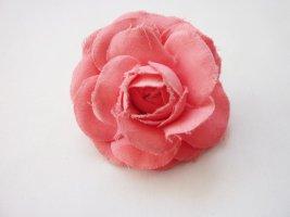 Haarblume Haarblüte Rose apricot