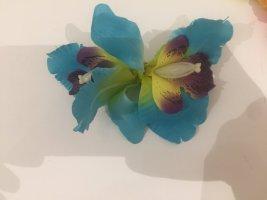 Barrette turquoise