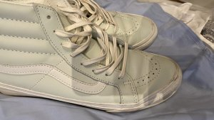 Vans Chaussure skate gris vert-vert menthe