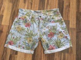 Please Shorts multicolore