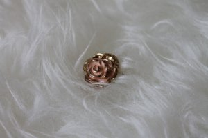 Hübscher Rosen-Ring