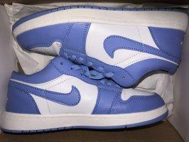 Air Jordan Basket à lacet bleu fluo