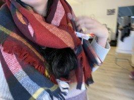 Sciarpa di lana multicolore