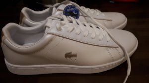 Lacoste Sneaker  40.5