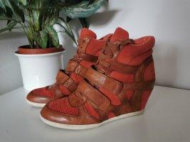 ASH Heel Sneakers red