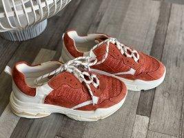 Neue Sneaker *Herbstkollektion* Gr. 37