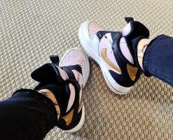 Nike Air Jordan retro Dunk limited