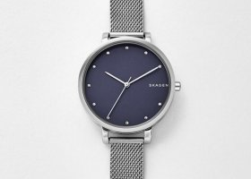 Nordisch cool: silberne SKAGEN Uhr (NEU mit Garantie)