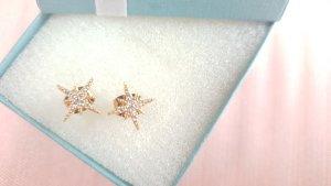 Ohrringe von Paul Valentine