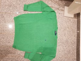 Polo Ralph Lauren Oversized Sweater mint