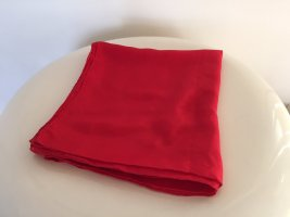Silk Cloth red silk