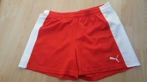 Shorts rot 38/M