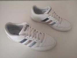 Adidas Basket à lacet blanc