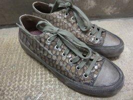 Candice Cooper Sneaker stringata marrone-grigio Pelle