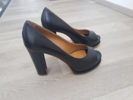 Studio Pollini Pumps Gr. 39