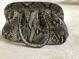 Tasche Python