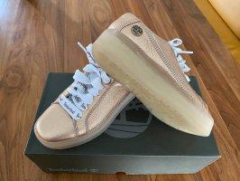Timberland Heel Sneakers multicolored