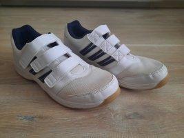 Adidas Basket hook-and-loop fastener blanc-bleu foncé