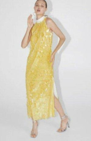 Abendkleid, Neu, Zara, Limited Editions, uner Sonne spielt das Stoff sehr auffällig