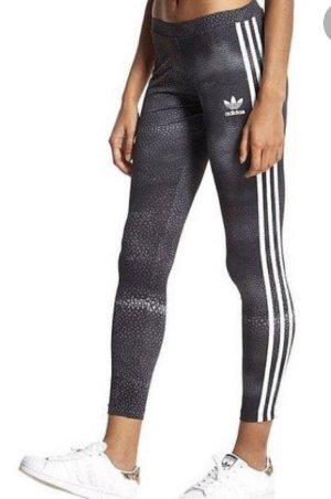 Adidas x Rita Ora Spodnie sportowe Wielokolorowy