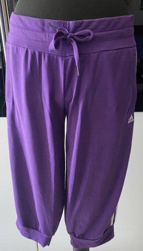 Adidas Caprihose Gr. M (38-40)