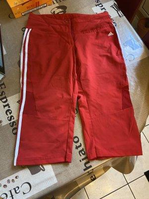 Adidas Sport Shorts white-dark red