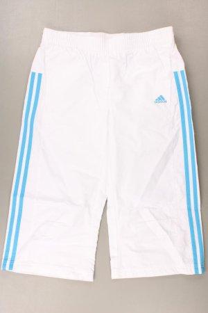 Adidas Haft richelieu w kolorze białej wełny Poliester