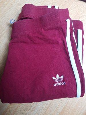 Adidas Jogginghose/Leggins
