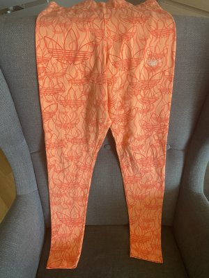 Adidas Legging in orange