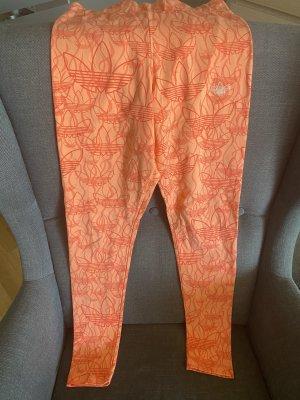 Adidas Legging in orange