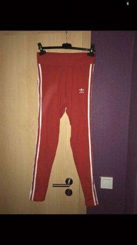 Adidas Leggings red