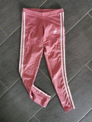 Adidas Leggings rosa