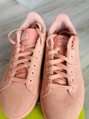 Adidas NEO Zapatilla brogue color rosa dorado-rosa