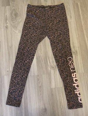 Adidas NEO Legginsy różowy-ciemnoszary